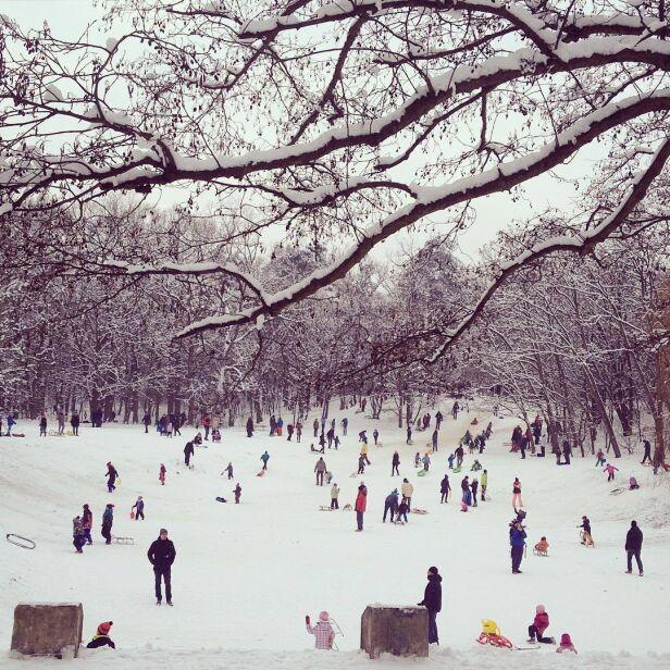 Zima w Podkowie Leśnej Anna Różnicka / annaroznicka.com