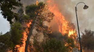Pożary w Libanie