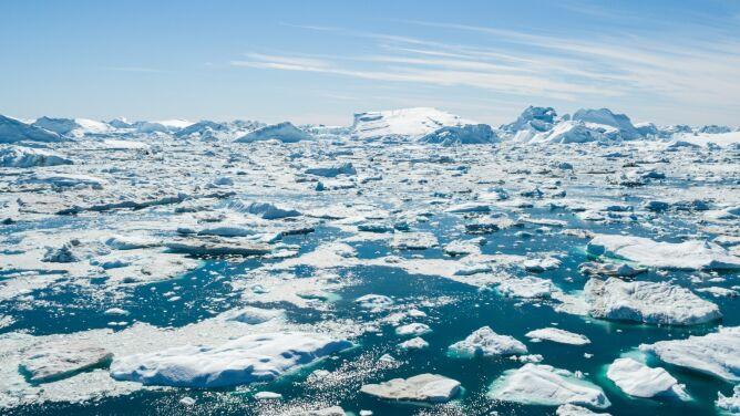 Ekstremalne topnienie. Tylko we wtorek Grenlandia straciła zatrważającą ilość lodu